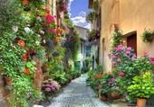 Ruelle fleurie en Italie