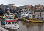 Bateaux de pêche à St Jean de LUZ