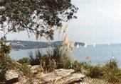 Voiliers dans la baie de Sydney