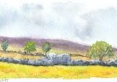 paysage en aubrac