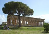 temple de Peastum Italie