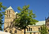 Dom de Münster