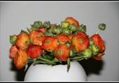Puzzle Bouquet de renoncules.