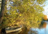 Bord de rivière