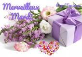 bouquet printanier et petit kdo