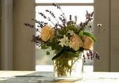 Roses et jasmin