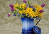 Tulipes, jonquilles et mysotis