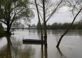 La Loire au Printemps