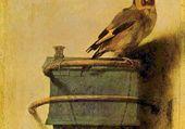 Le Chardonneret par Fabritius