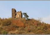 Ruine sur la Moselle