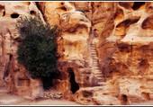 Les beautés de Petra.
