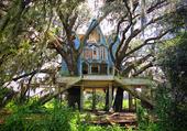 maison dans les arbre