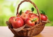Croquons la pomme