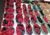 corbeilles de fruits rouges