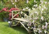 Un coin de jardin fleuri