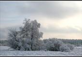 Ma région en hiver