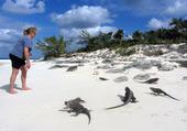 Puzzle iles exumas bahamas