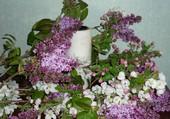 Lilas et fleurs de pommier