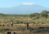 Puzzle Les Neiges du Kilimandjaro