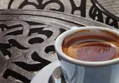 café23