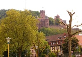 Puzzle Heidelberg