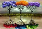 3 arbre de couleur