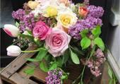 Bouquet champètre