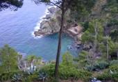 Crique. Cap Roig - Costa Brava