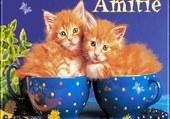 nouvelle baignoire a chats