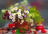 Senteurs et saveurs du printemps