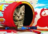 Puzzle Le chaton peintre