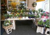 Sur un petit marché à Vienne