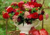 Un bouquet automnal