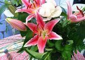 Bouquet fleurit