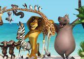 Puzzle Madagascar