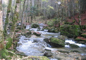 Rivière Le Hérisson dans le Jura