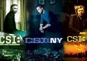 les CSI