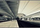 La gare des Guillemins.