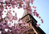 Puzzle Paris au printemps