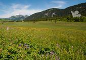 Plateau des Glières  Hte Savoie