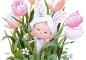 bébé tulipe