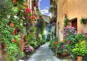 Puzzle Rue fleurie