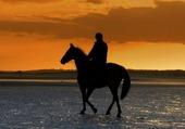 Balade à cheval Cambrils  Espagne