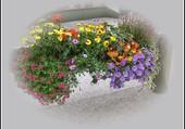 Jolie vasque fleurie