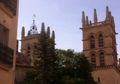 cathedrale Mpt