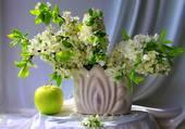 Bouquet de fleurs de pommiers par hélène