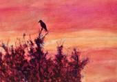corbeau sur  un arbre perché