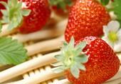 Miam des fraises