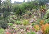 jardin botanique a blanes espagne