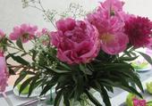 bouquet de pivoines par hélène